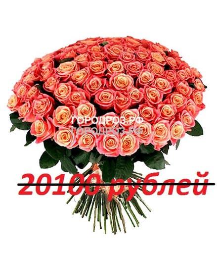Букет из 201 персиковой розы