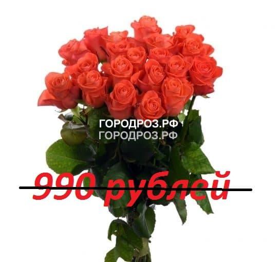 Букет из 11 коралловых роз