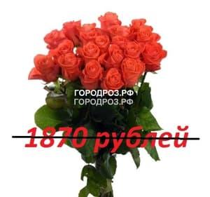 Букет из 17 коралловых роз