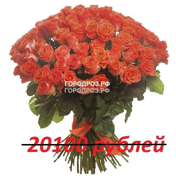 Букет из 201 коралловой розы