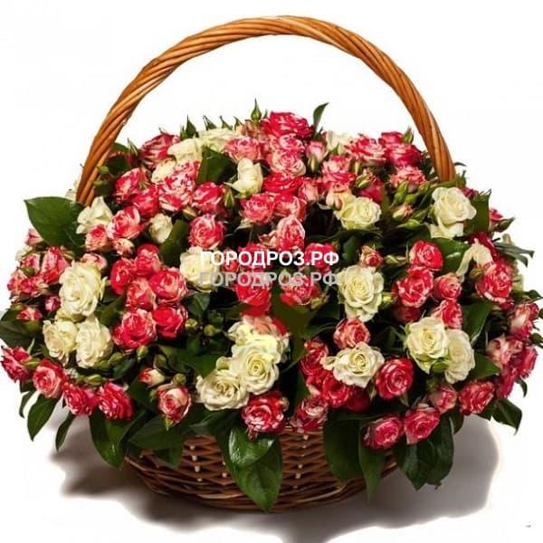 Кустовые розы в корзине красные и белые