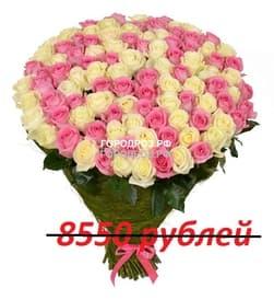Букет из 95 розовых и белых роз