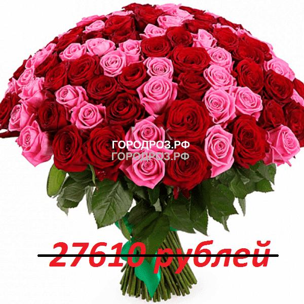 Букет из 251 красной и розовой розы