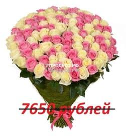 Букет из 85 розовых и белых роз