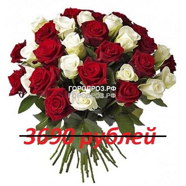 Букет из 41 красной и белой розы