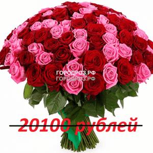 Букет из 201 красной и розовой розы