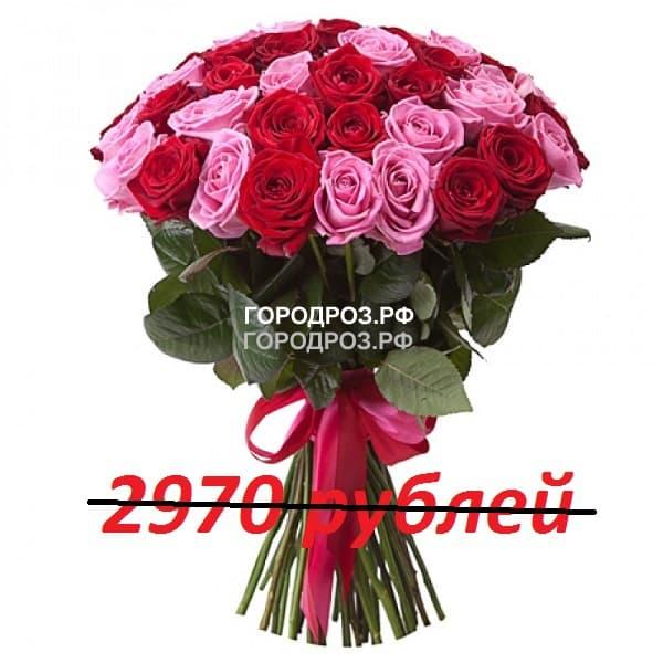 Букет из 33 красных и розовых роз