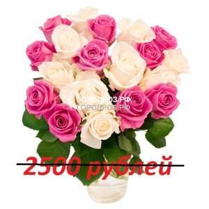 Букет из 25 розовых и белых роз
