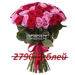 Букет из 31 красной и розовой розы