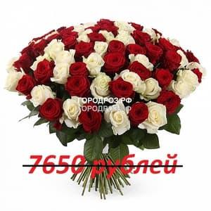 Букет из 85 красных и белых роз
