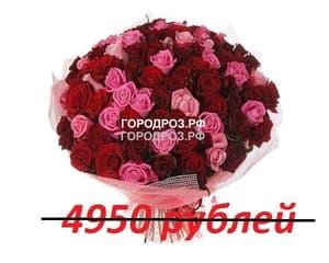 Букет из 55 красных и розовых роз