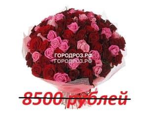 Букет из 85 красных и розовых роз