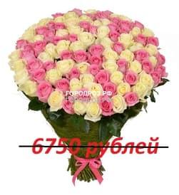Букет из 75 розовых и белых роз